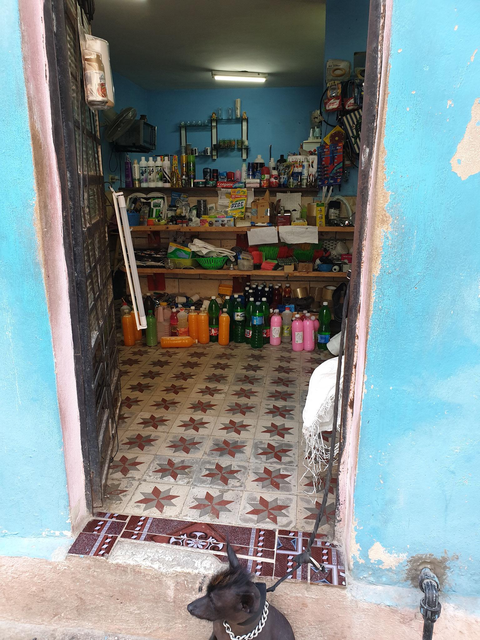 Drogerie in Havanna bewacht von einem Hund mit Irokese