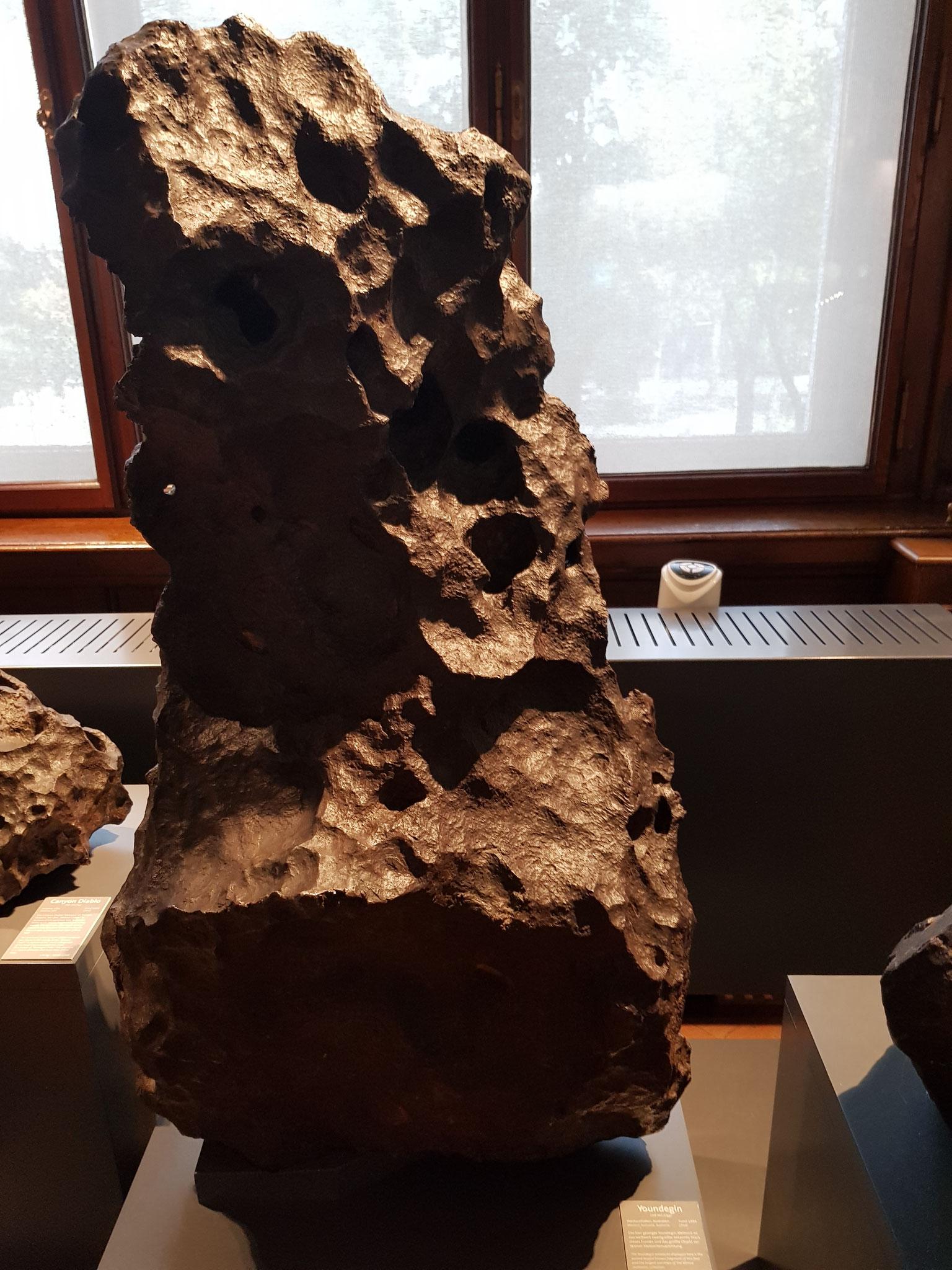 Abbildung 2. b.: Verschiedene Meteorite aus der Sammlung des Naturhistorischen Museums Wien (eigene Aufnahme)
