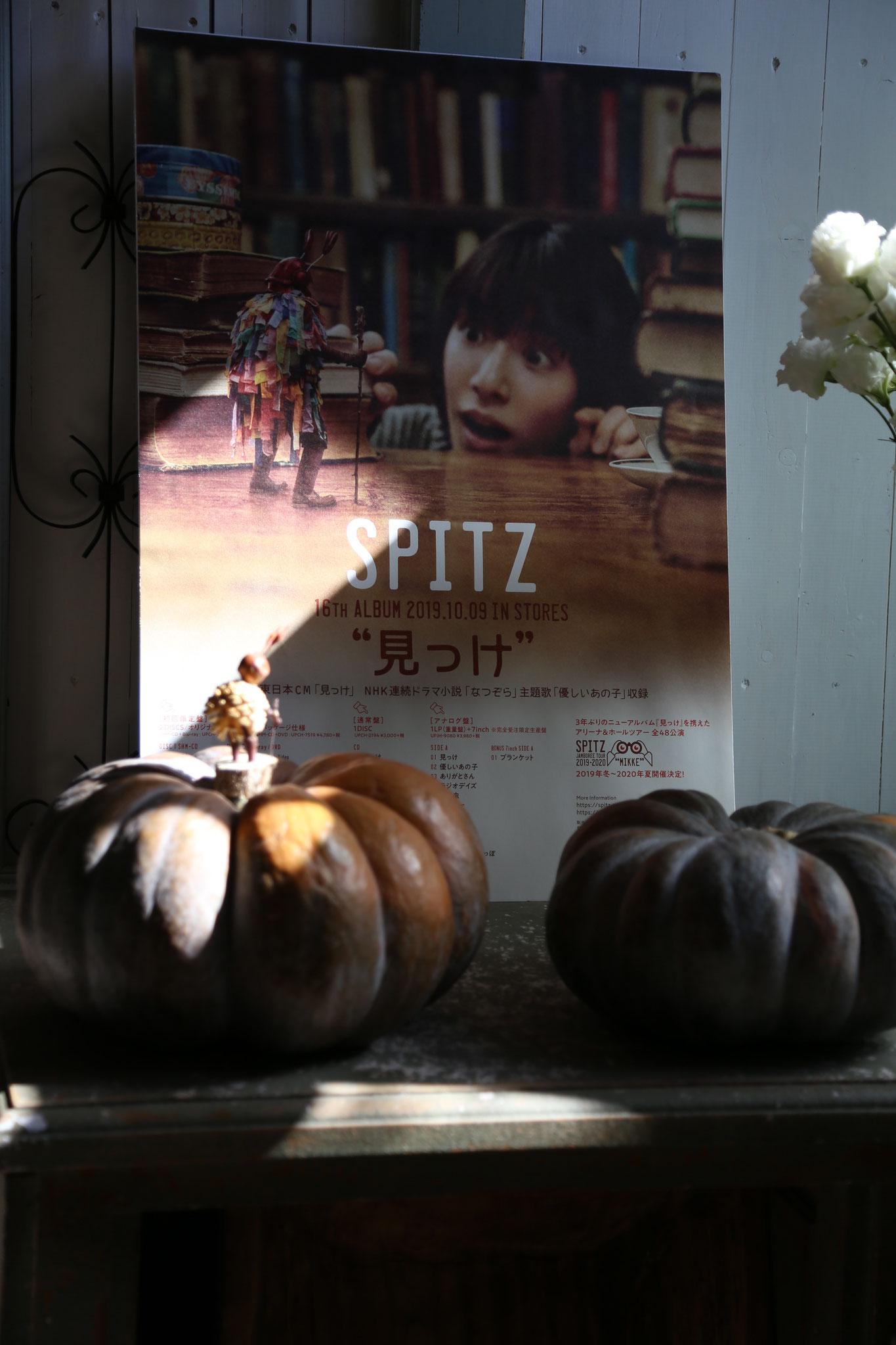 かぼちゃと・・ミノムシさん📷