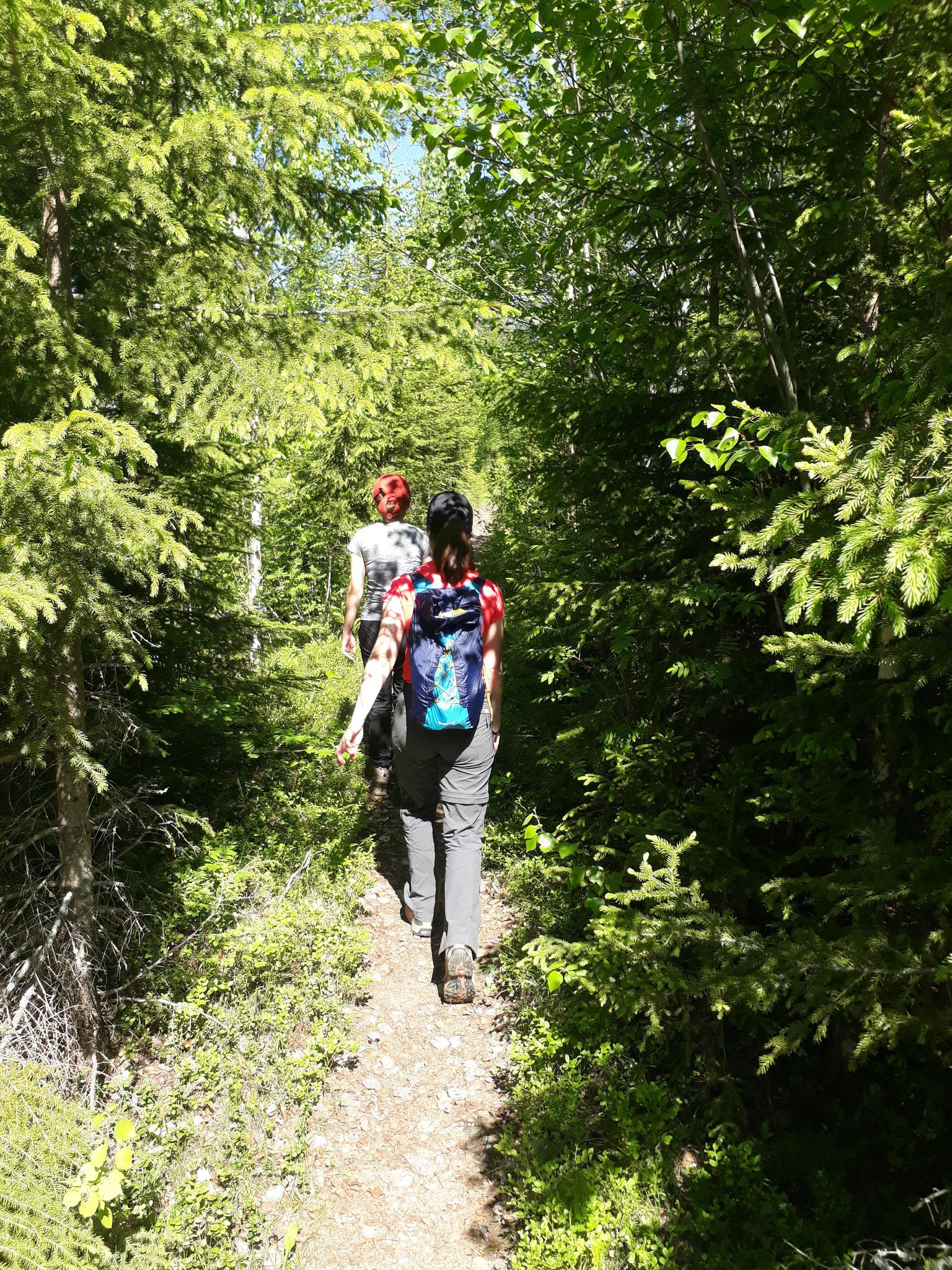 Madeleine und Pauline wandern im Skulleskogen Nationalpark
