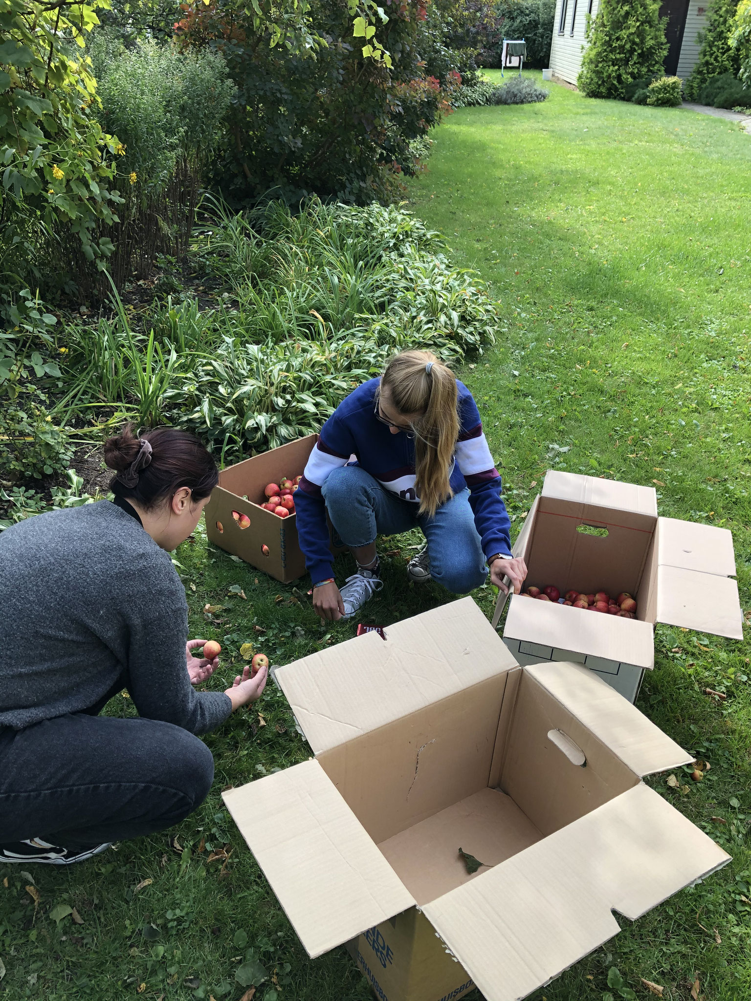 Isabell und Julia beim Äpfel aufsammeln (Foto: Eva)