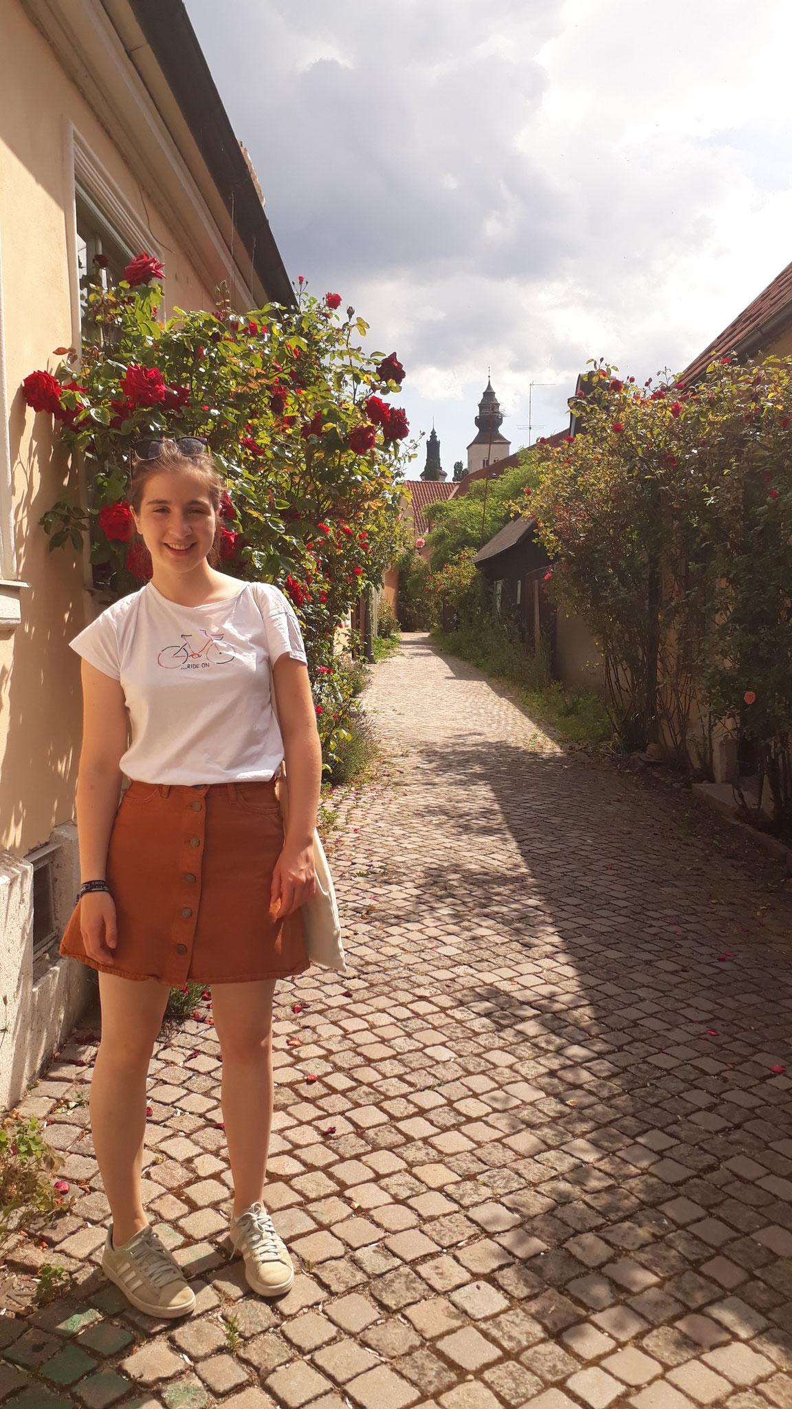 Madeleine auf Gotland
