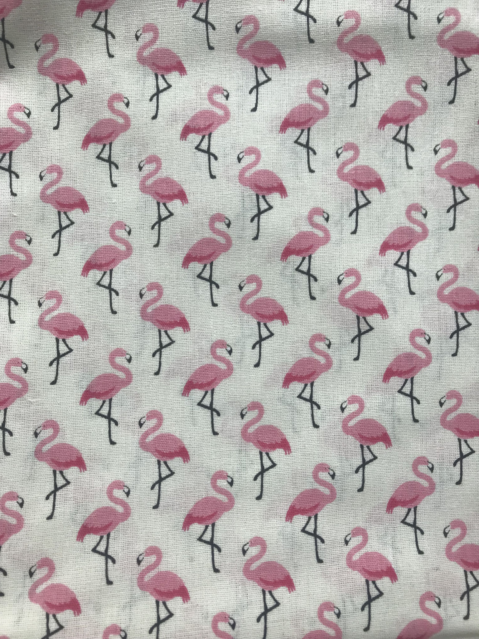 Flamingo creme