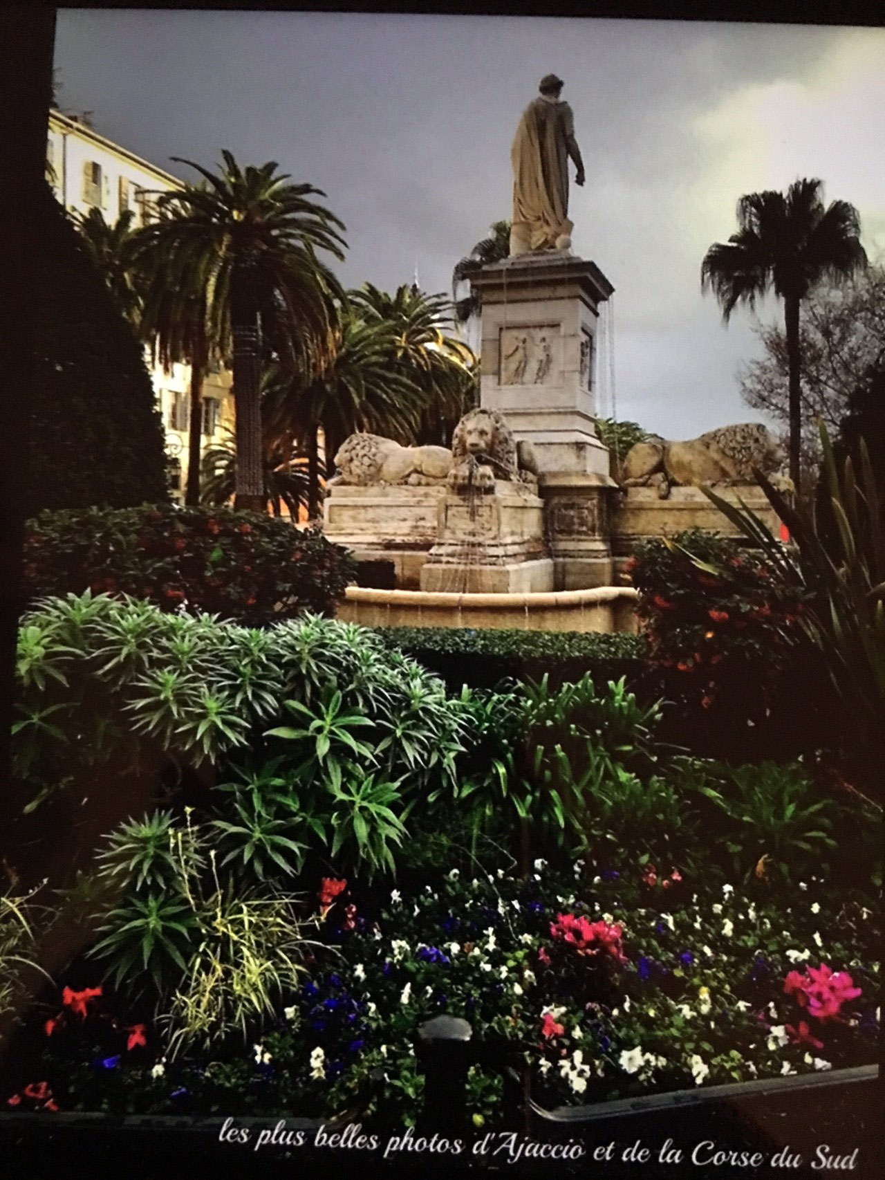 Place des Palmiers devant la mairie