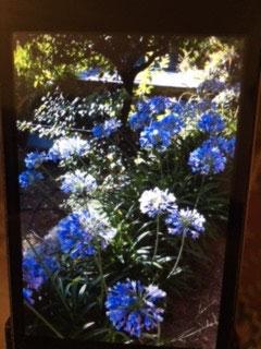 vue du jardin - La maison de Ninette -