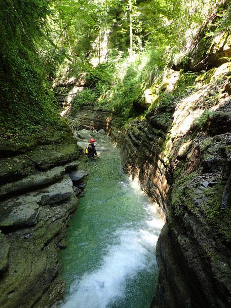 Canyon furco