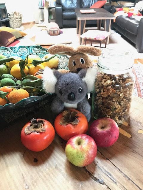 Lecker die Früchte aus dem Garten