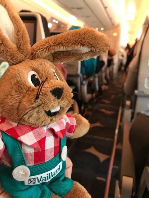 Boarding completed - Fasten seatbelts