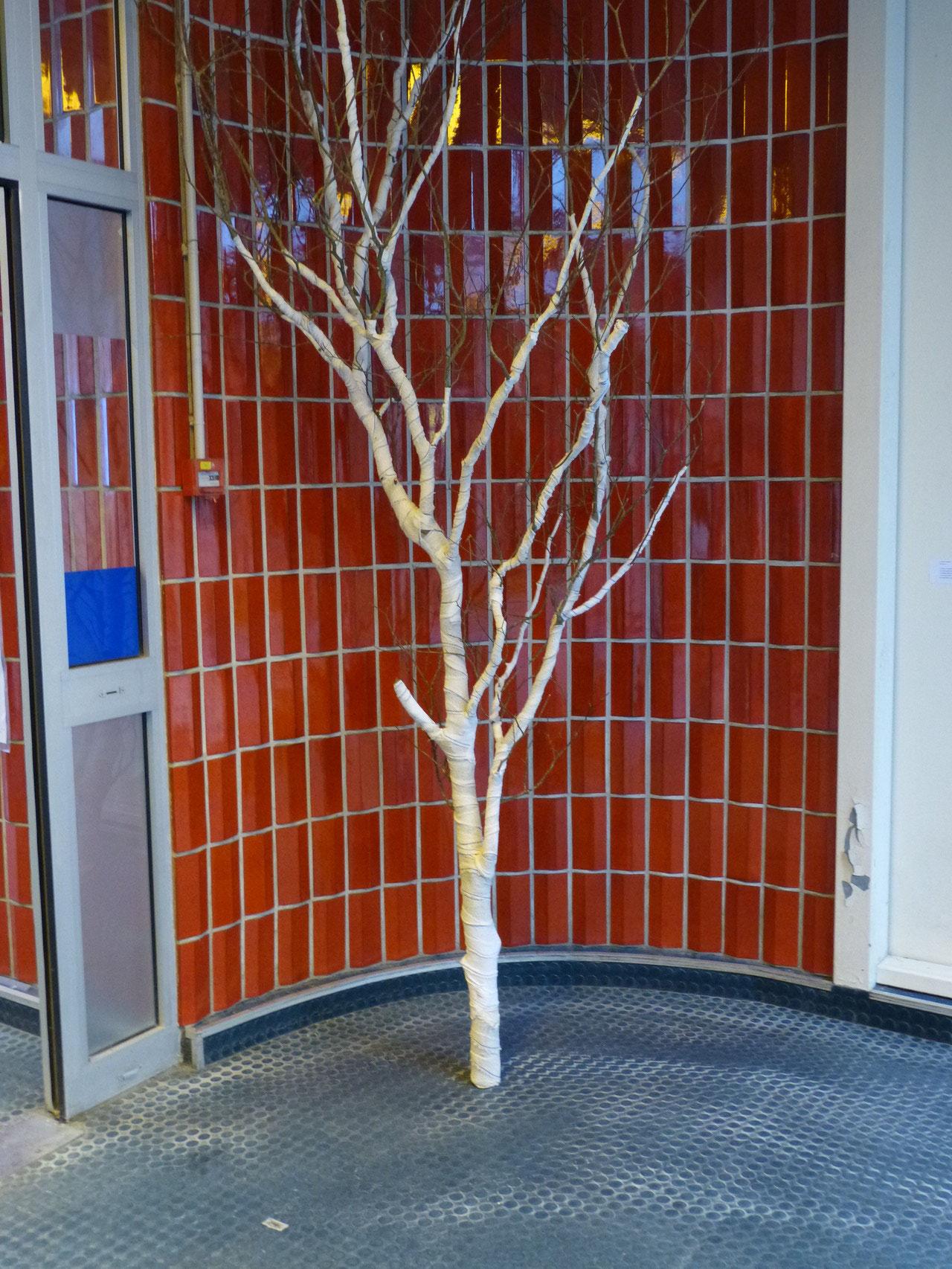 Un arbre momifié de pansements