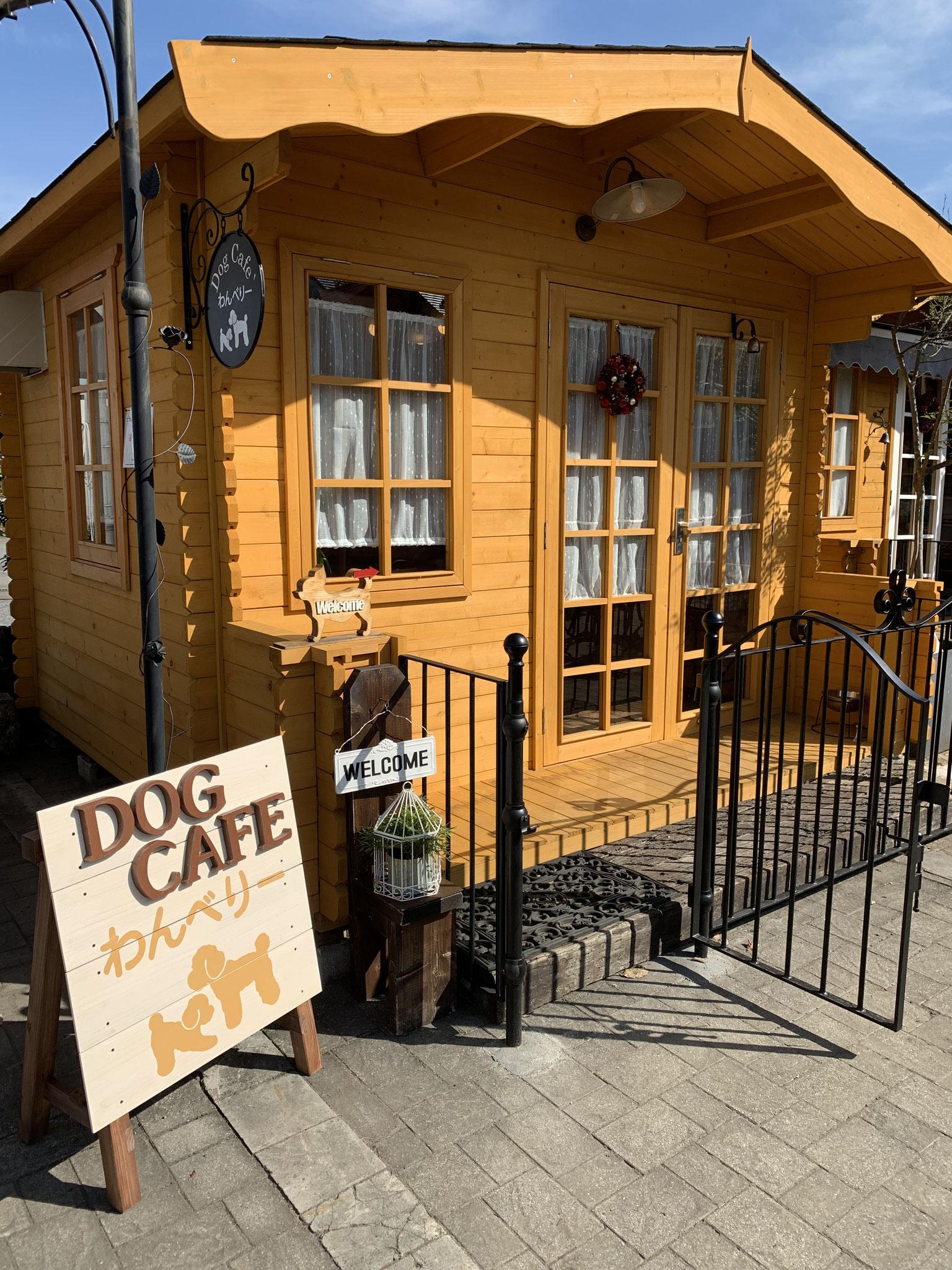dog cafe'わんべりー 入口に外扉を付けました 要予約