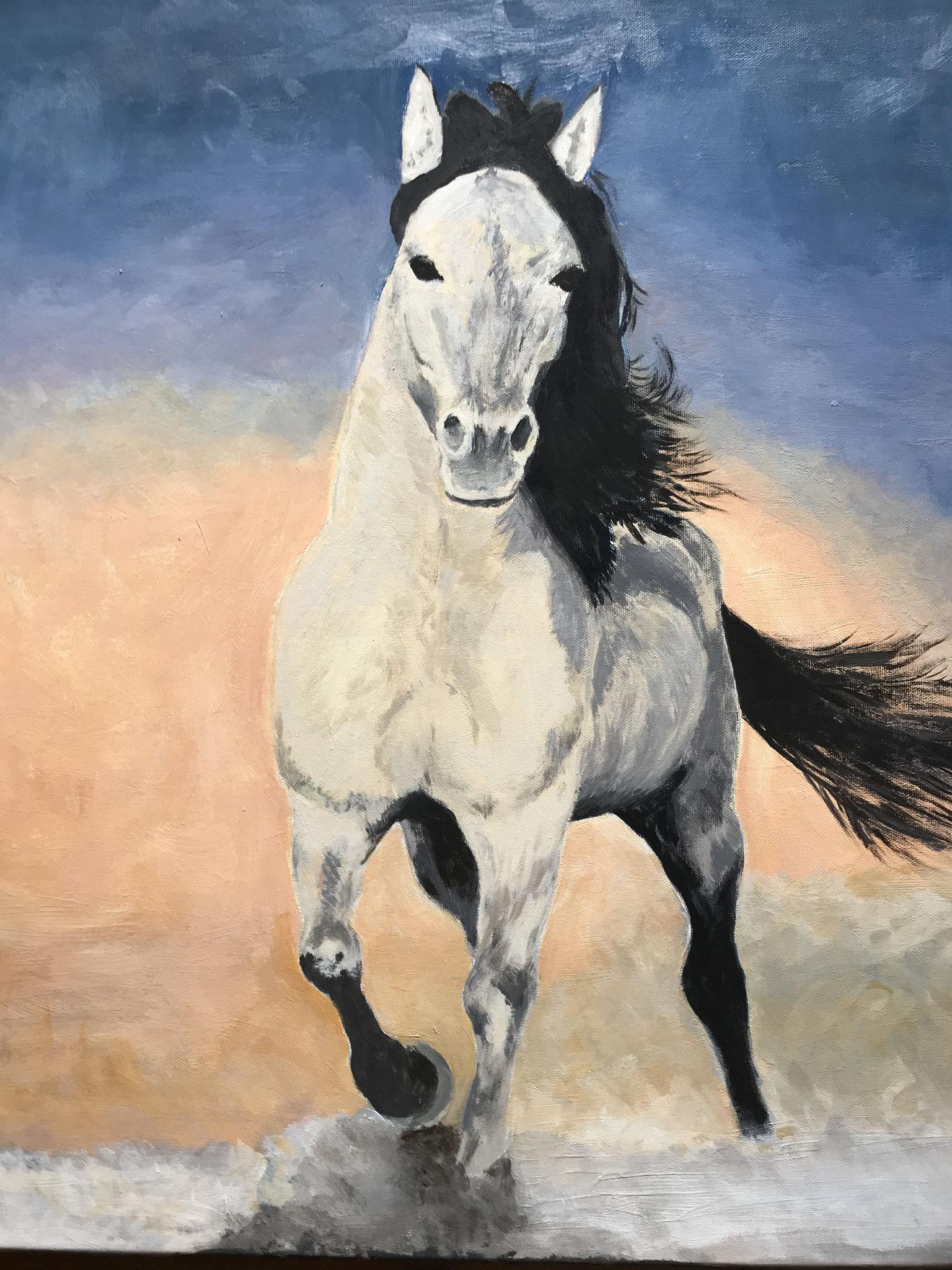 Galoppierendes Pferd (Interpretation nach einem Foto aus dem Internet)