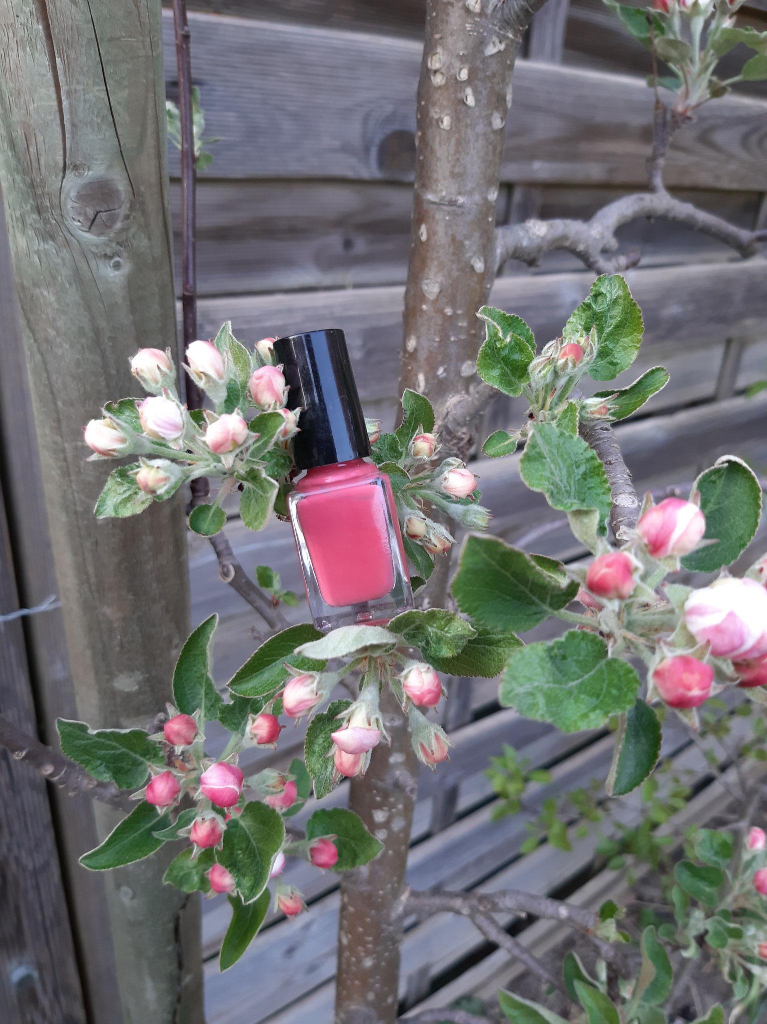 Nagellack Apfelblüte