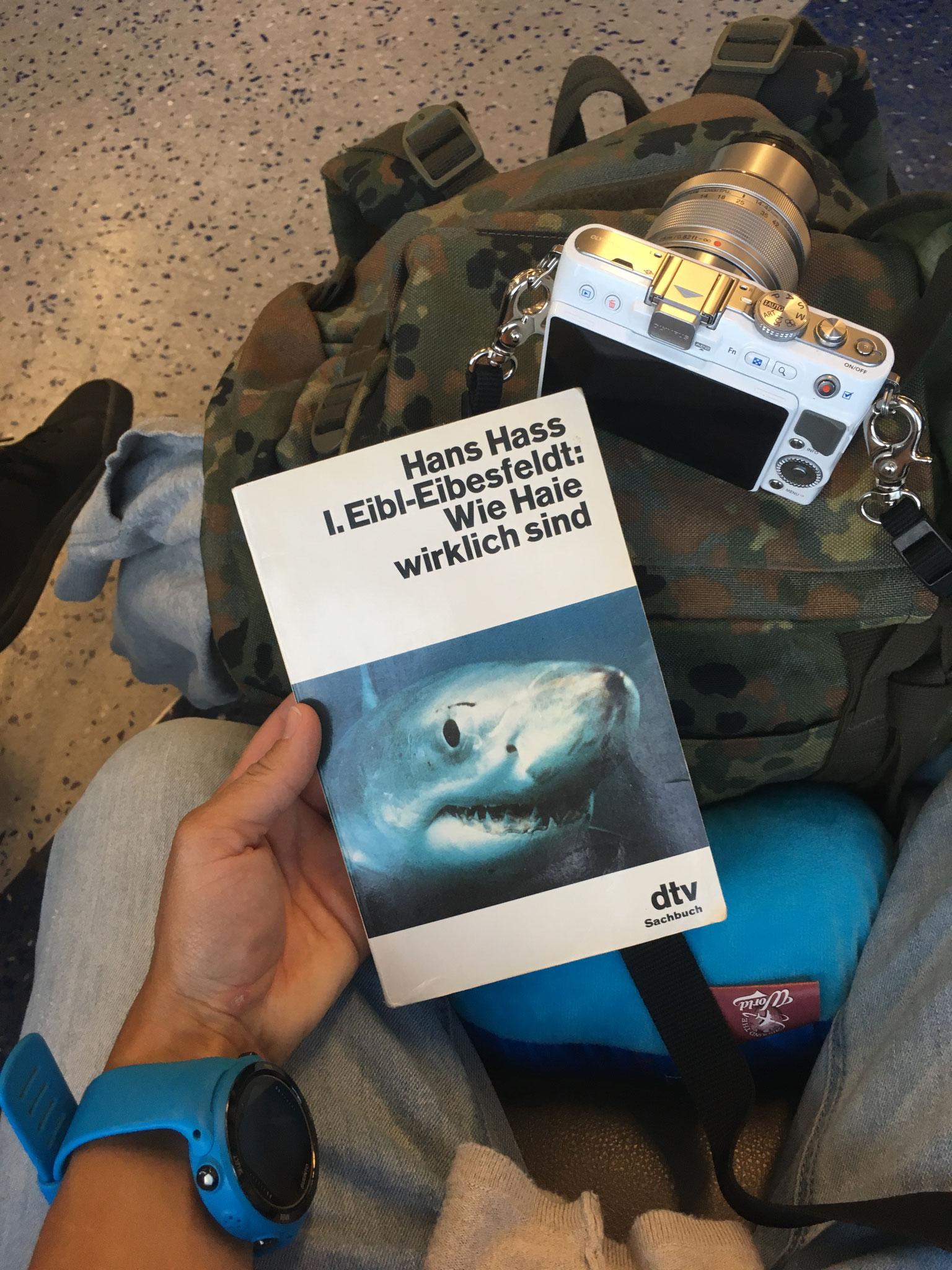 Meine Lektüre und ein Lieblingsbuch von Erich