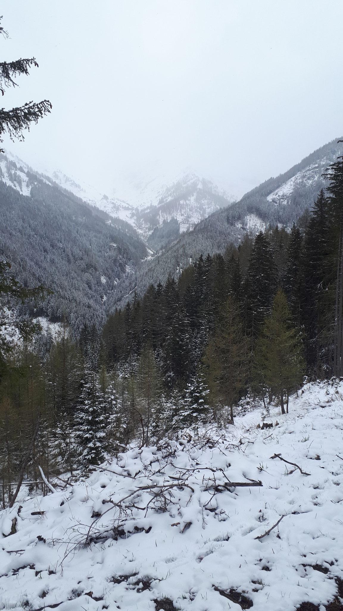 ...neuerlicher Wintereinbruch...