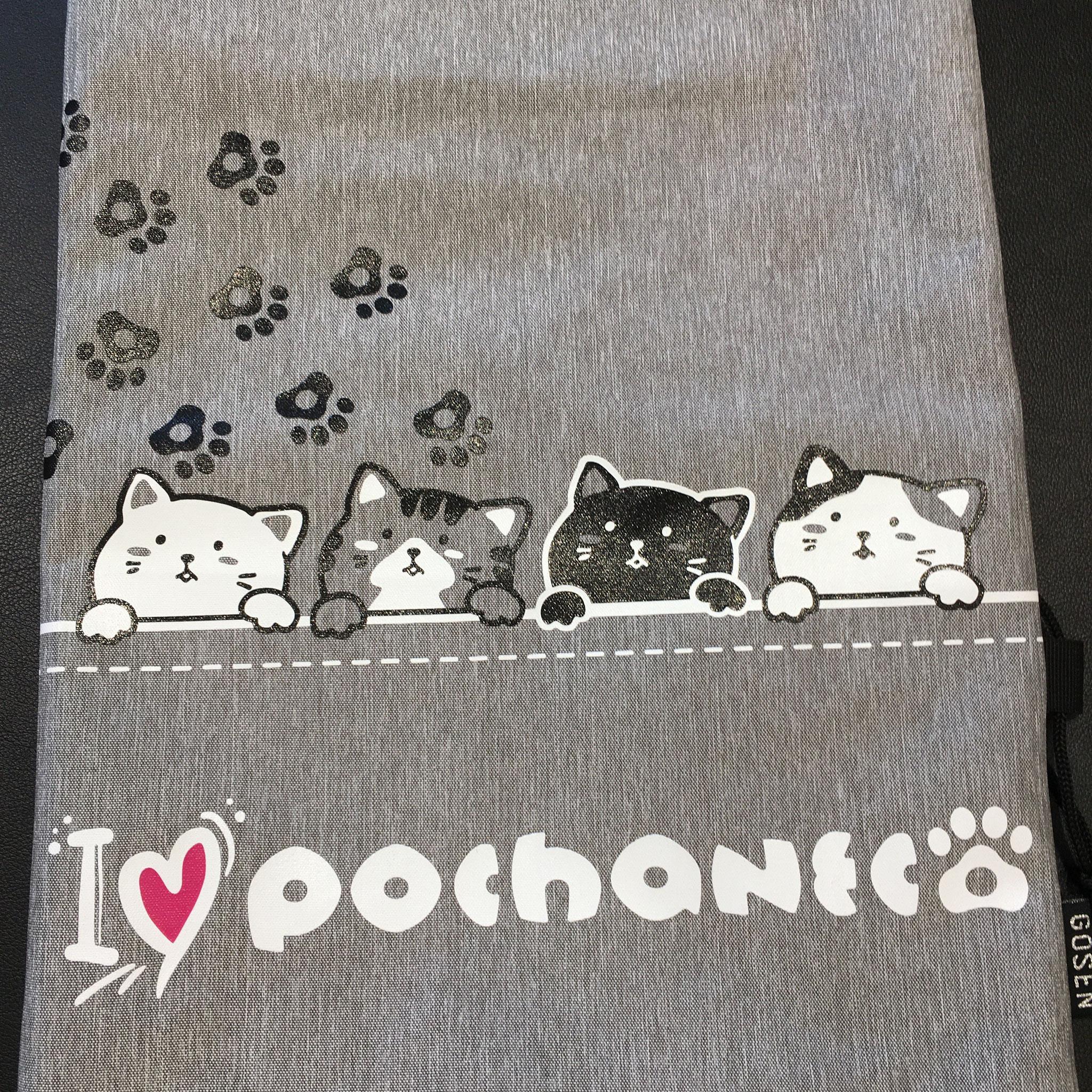 4匹のぽちゃ猫たち🐈
