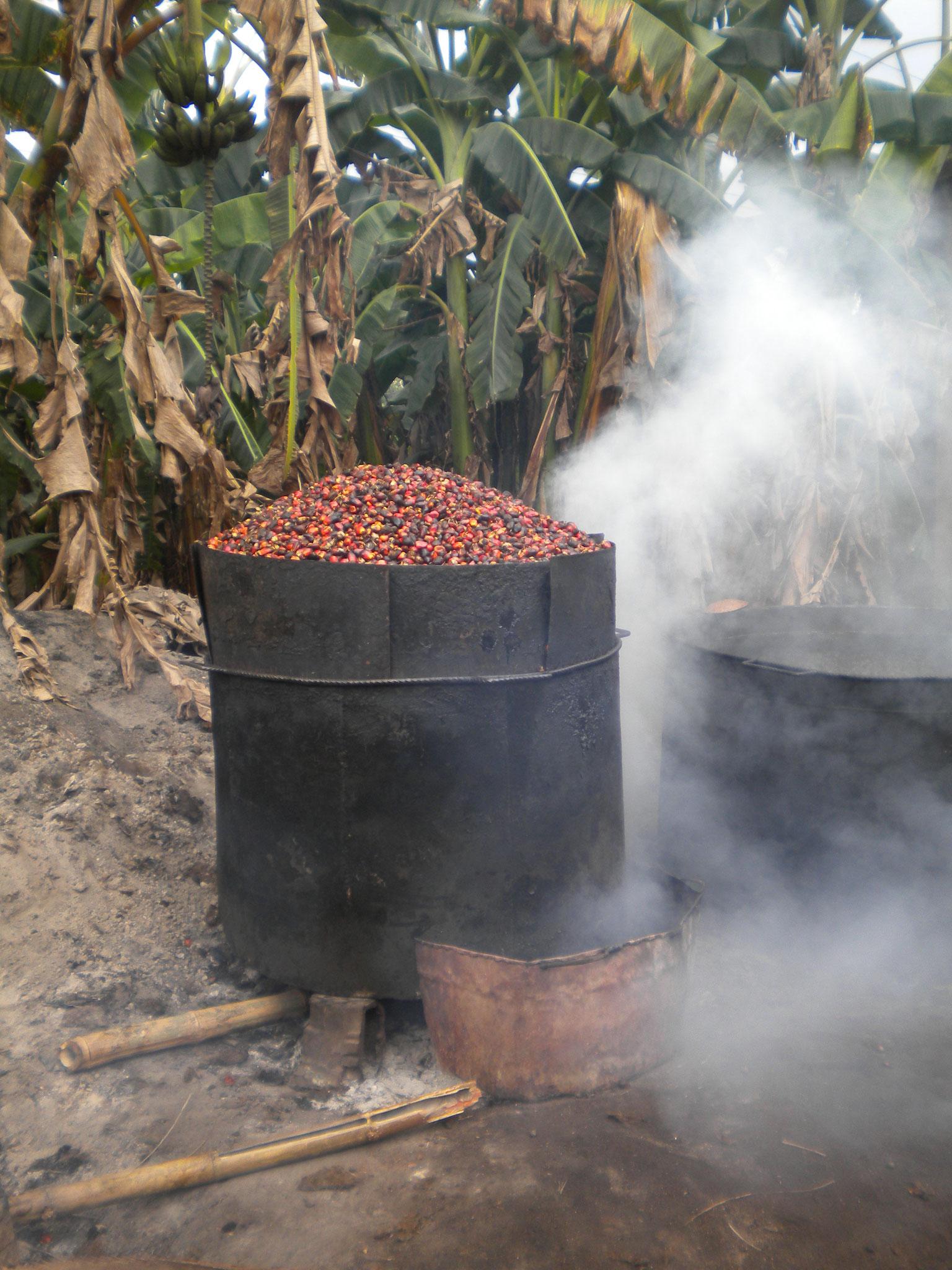 Palmölherstellung