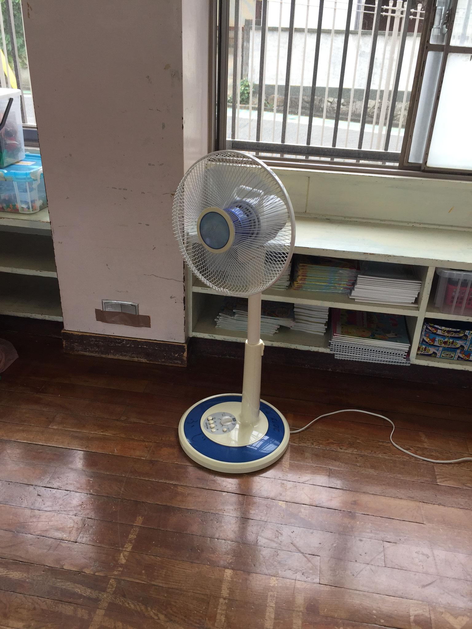 扇風機登場!!