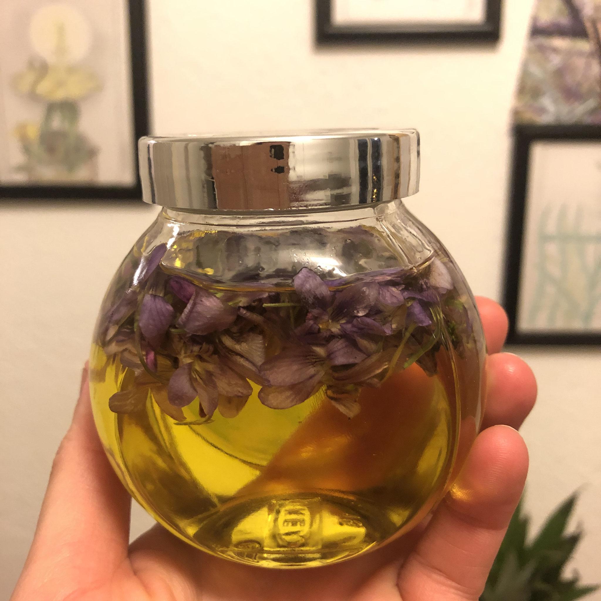 Hier: Veilchenöl. Die Öle lasse ich je nach Pflanze einige Wochen, bis zu 2 Monaten ziehen.