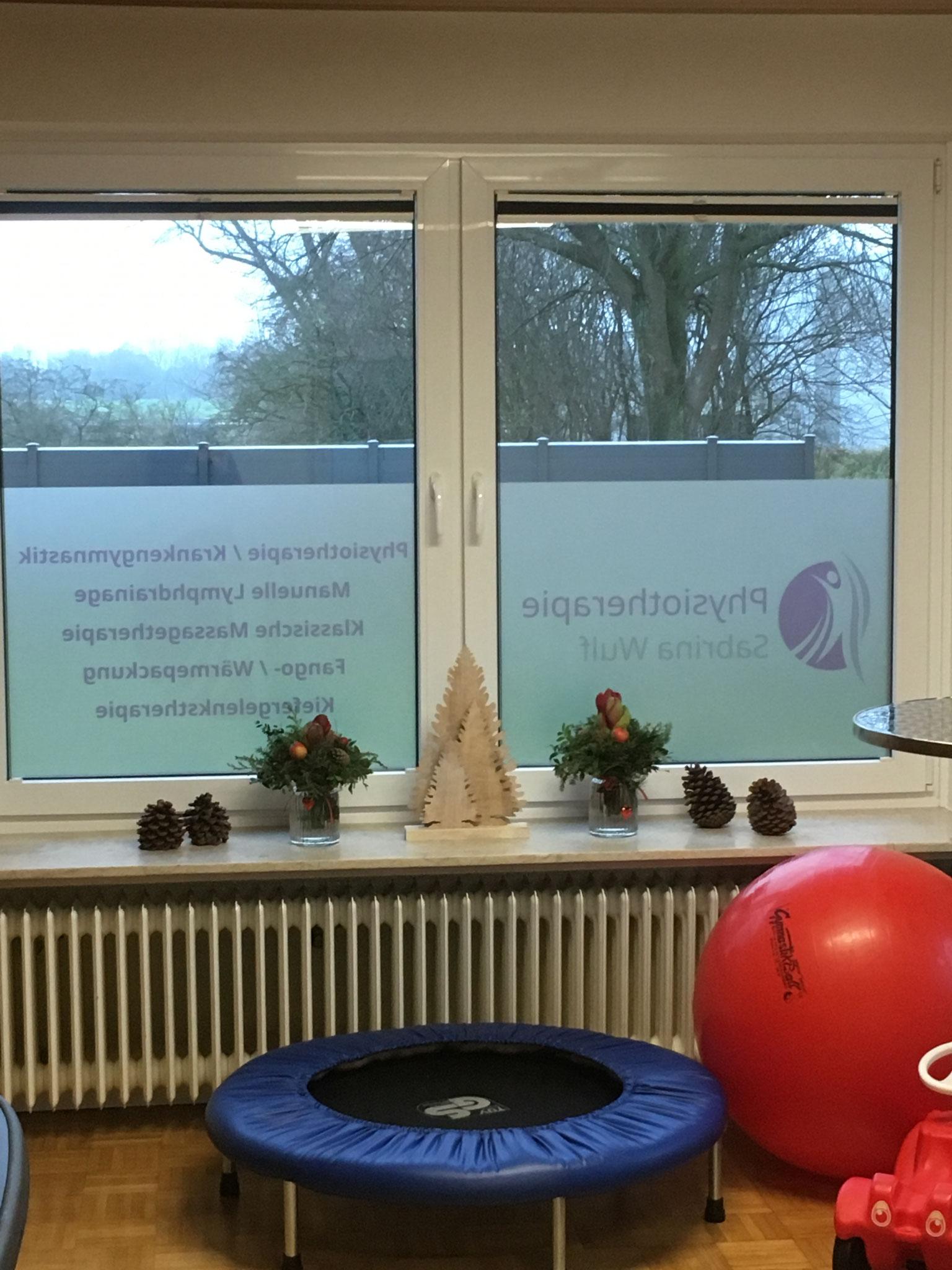 Gymnastikraum: Sprossenwand, Trampolin, Airexmatten, Pezzibälle & Co. Alles für aktive Therapien ist vorhanden - let's go!