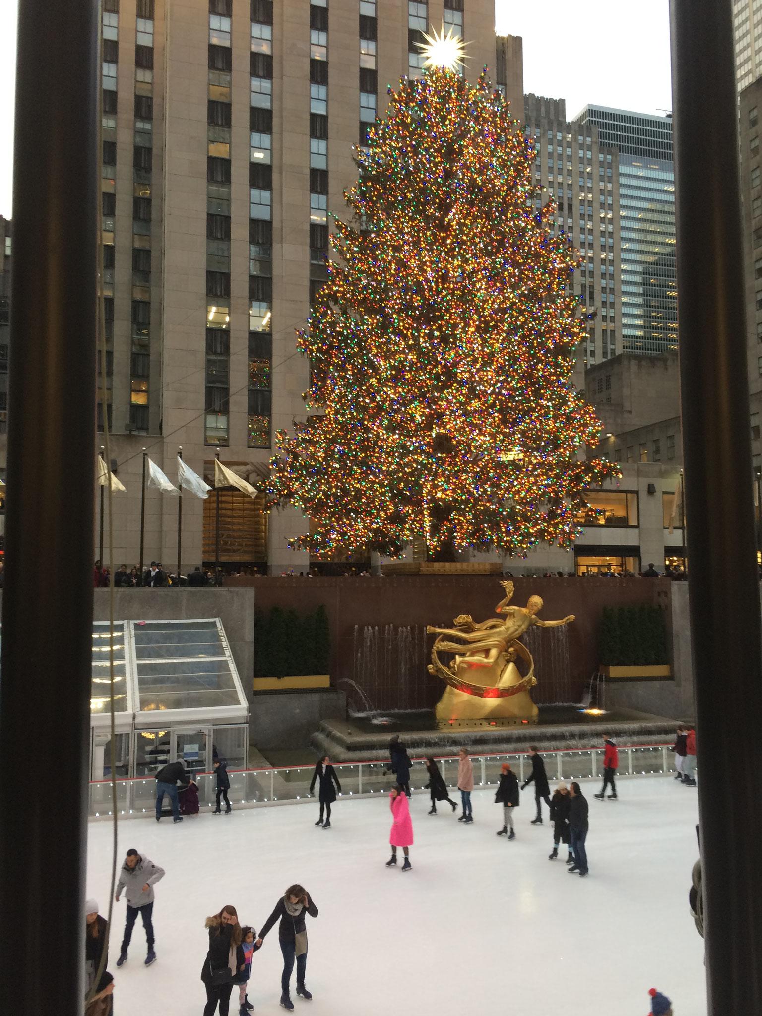Christbaum NYC 70 Jahre, 14 Tonnen, 25 Meter, 50.000 Lichter-muss man mal gesehen haben