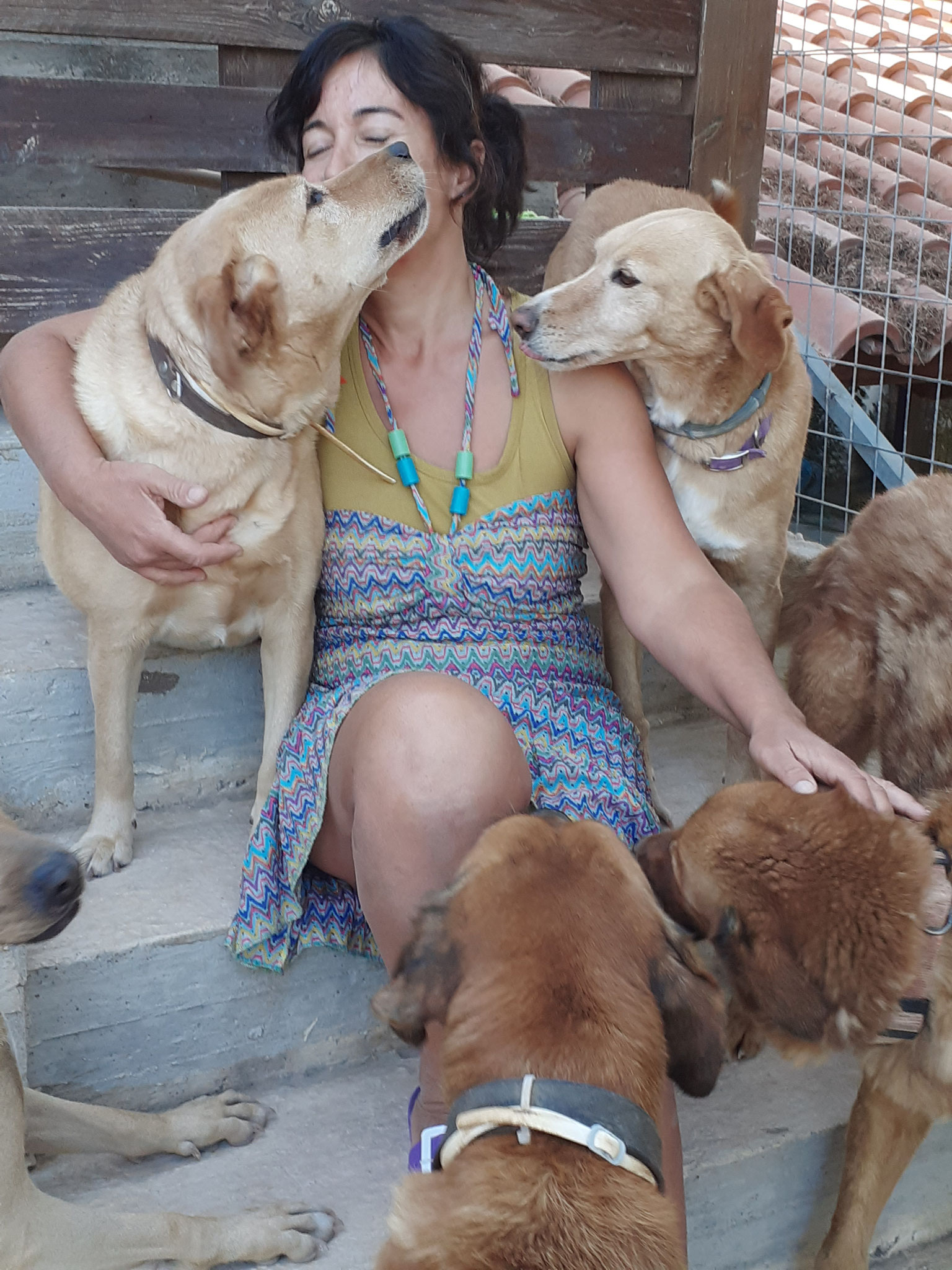 Die griechische Tierfreundin Matina Fouska ist sehr beliebt bei ihren Schützlingen.