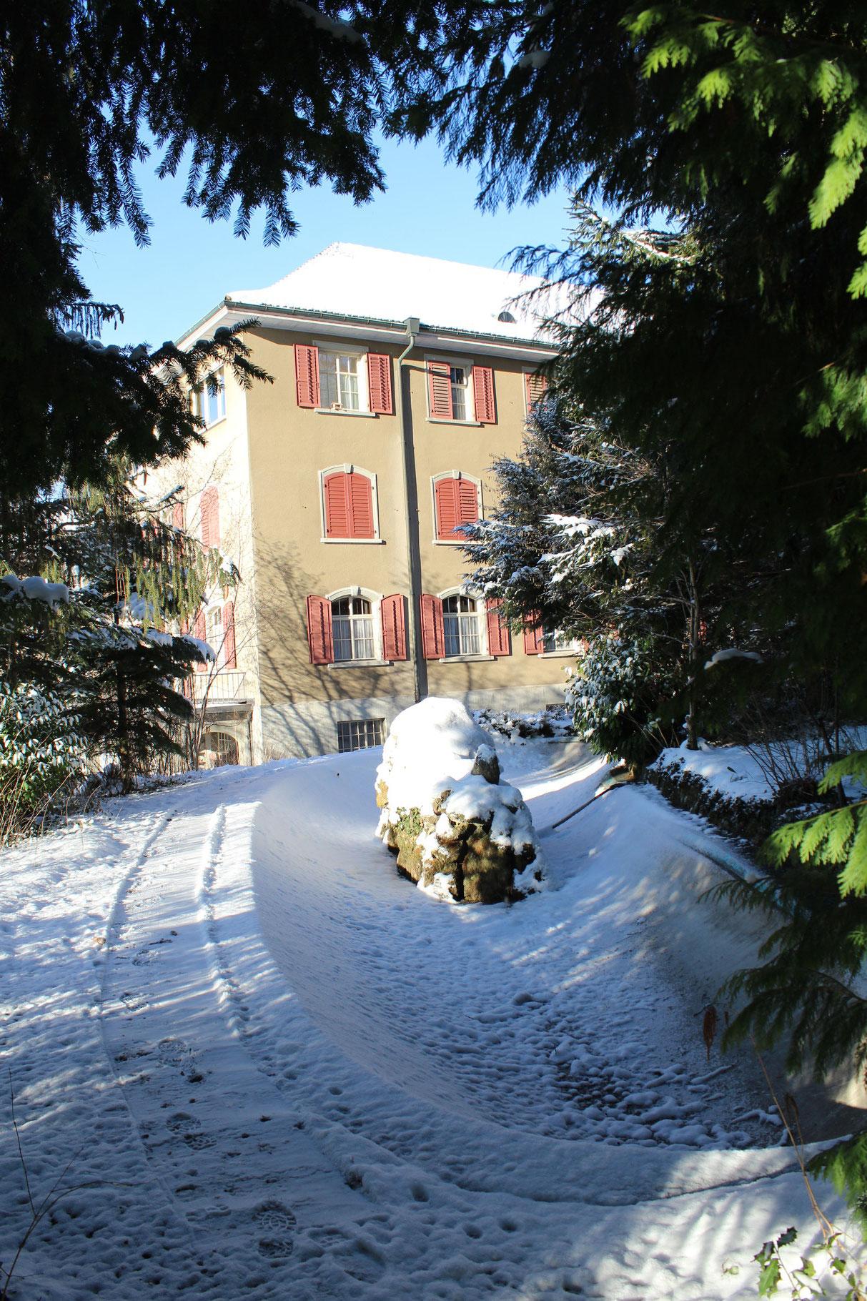 Der Klosterweiher im Winter