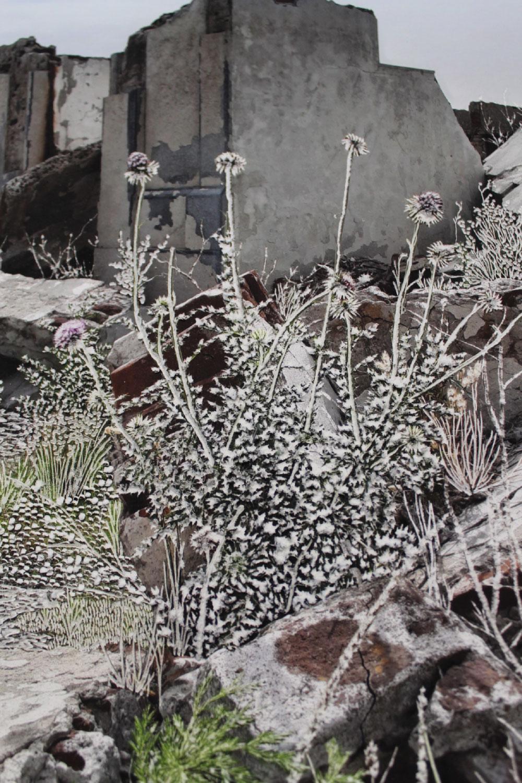 Raphaëlle Peria, Parmi les ruines #1 (détail), grattage sur photographie, 36 x 24 cm, 2020