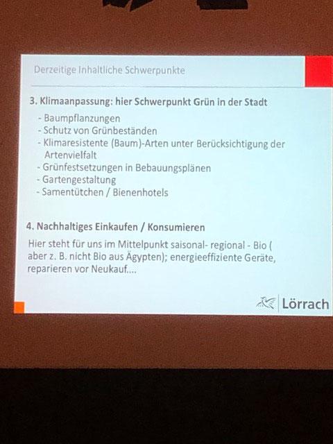 Schwerpunkte aus der Präsentation von Britta Staub-Abt