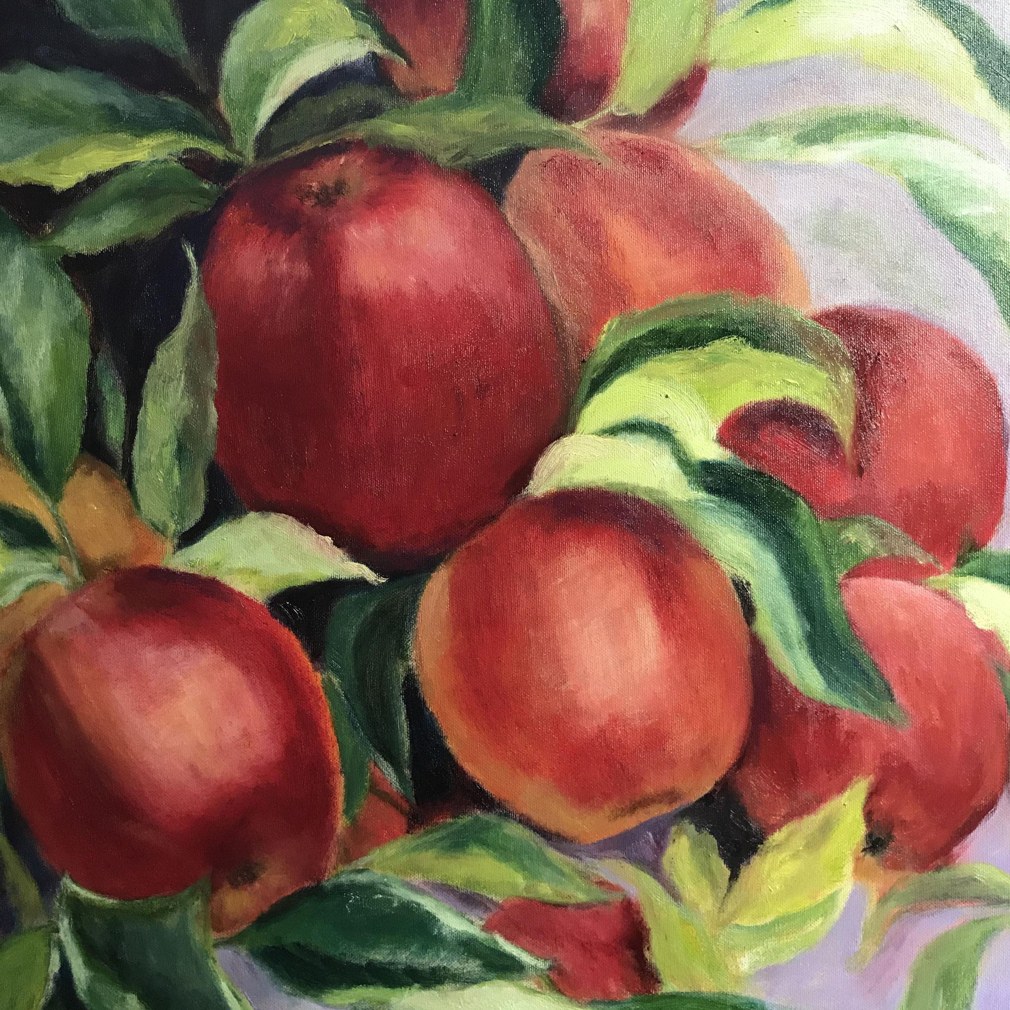 Rode Appels in lila. 60x60cm. olie op linnen. 2021.