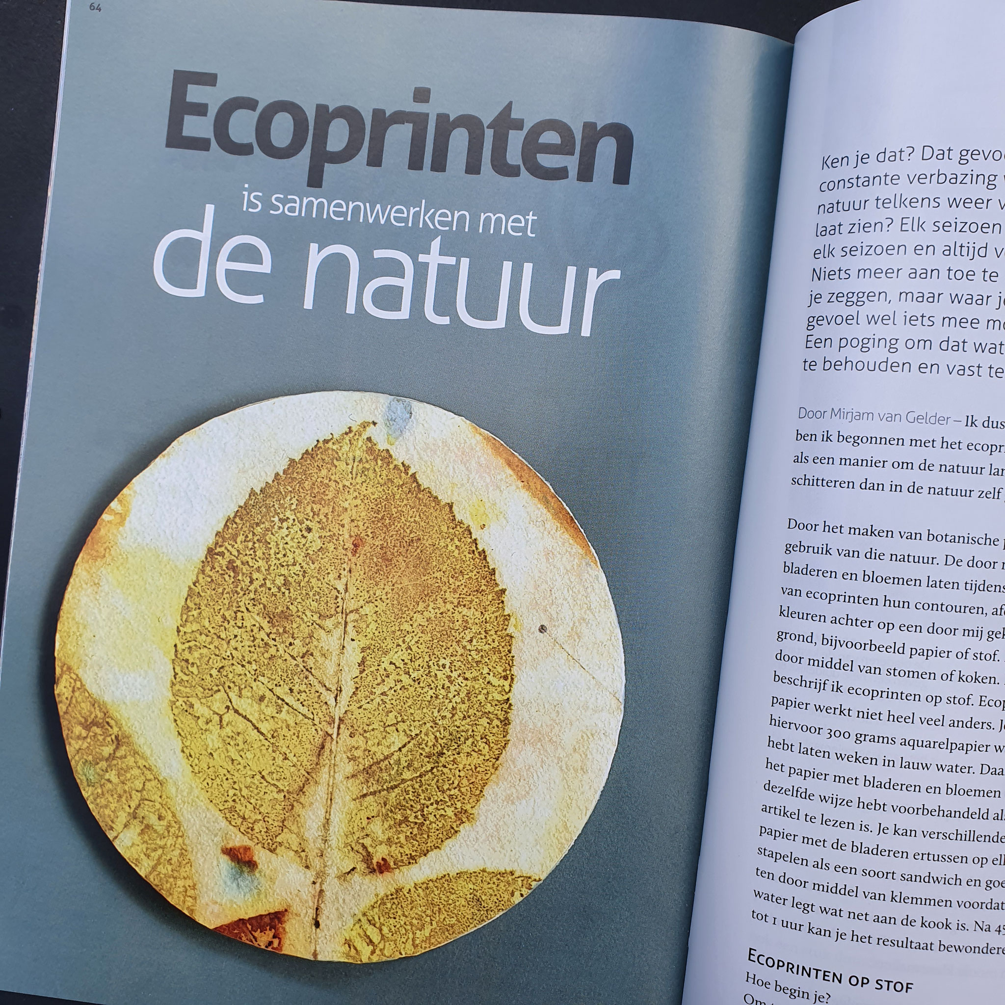 Blom Ecoprint - artikel in VEZEL Magazine oktober 2021