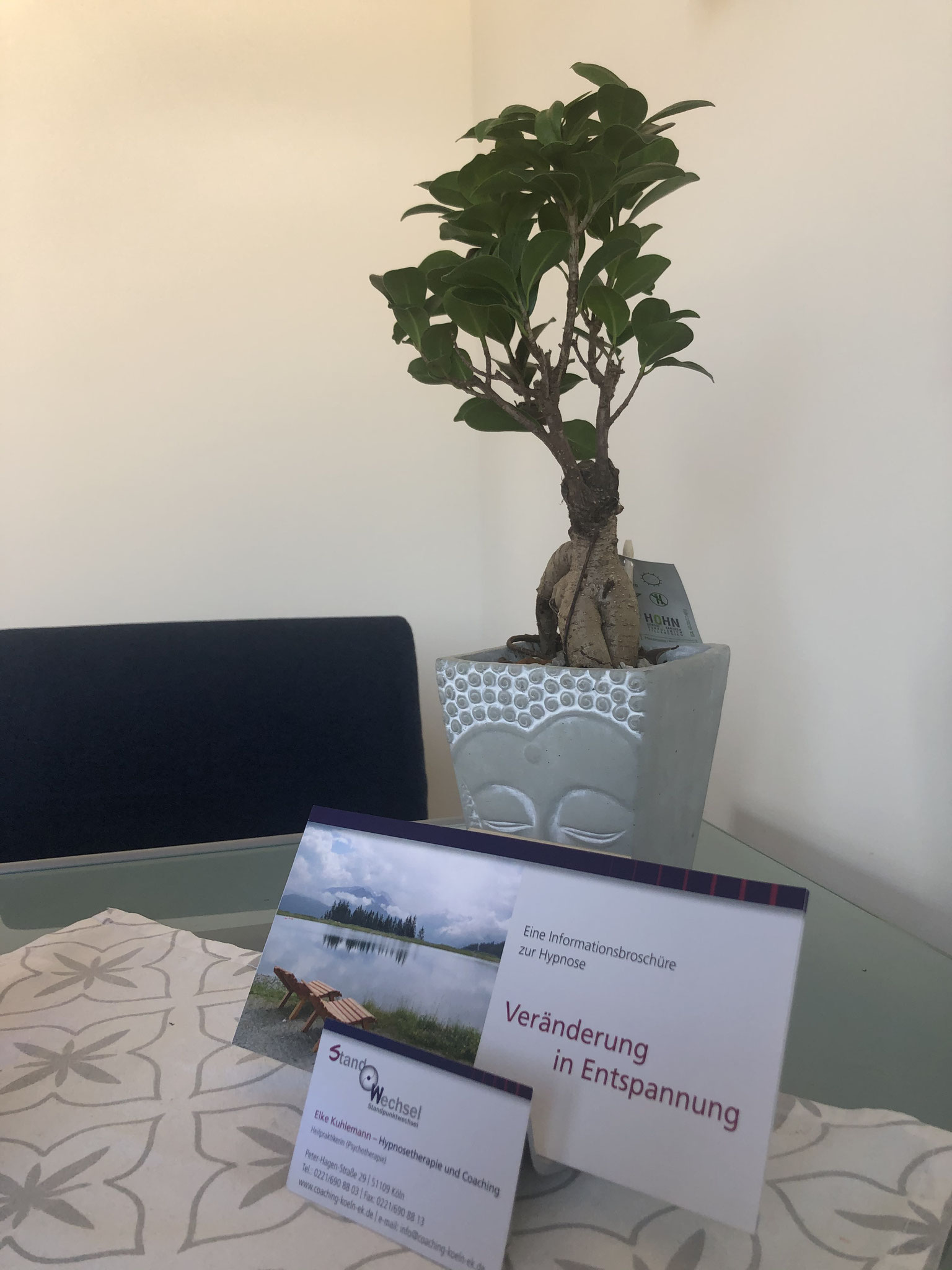 Ein Baum als Kraftsymbol zur Unterstützung