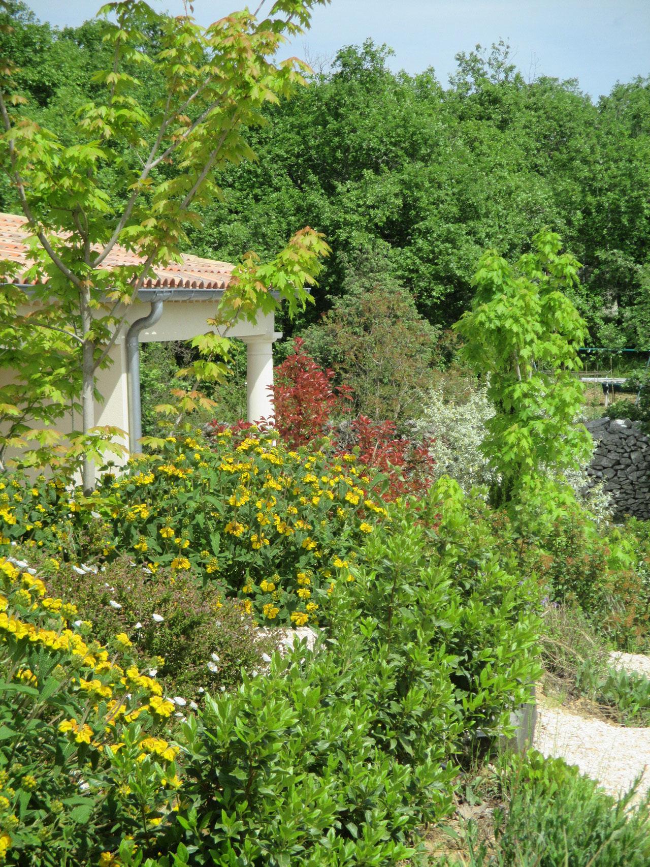 Les terrasses des chambres d'hôtes à Vogüé