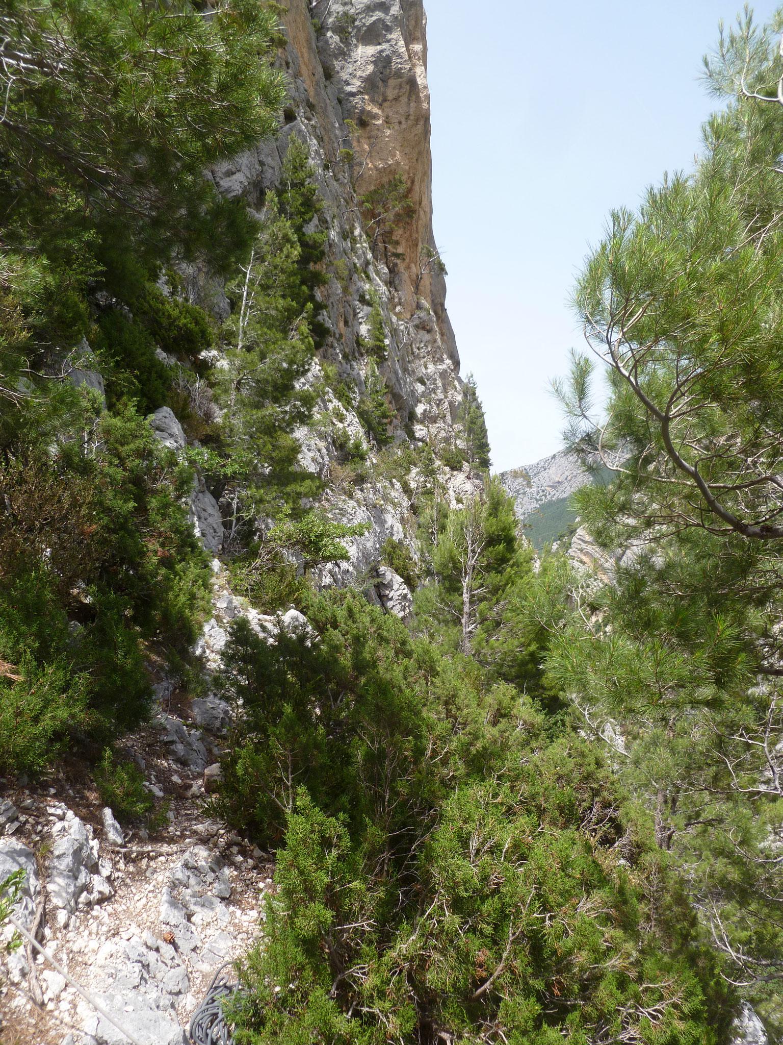 Rückblick auf die letzten Meter des Zustieges