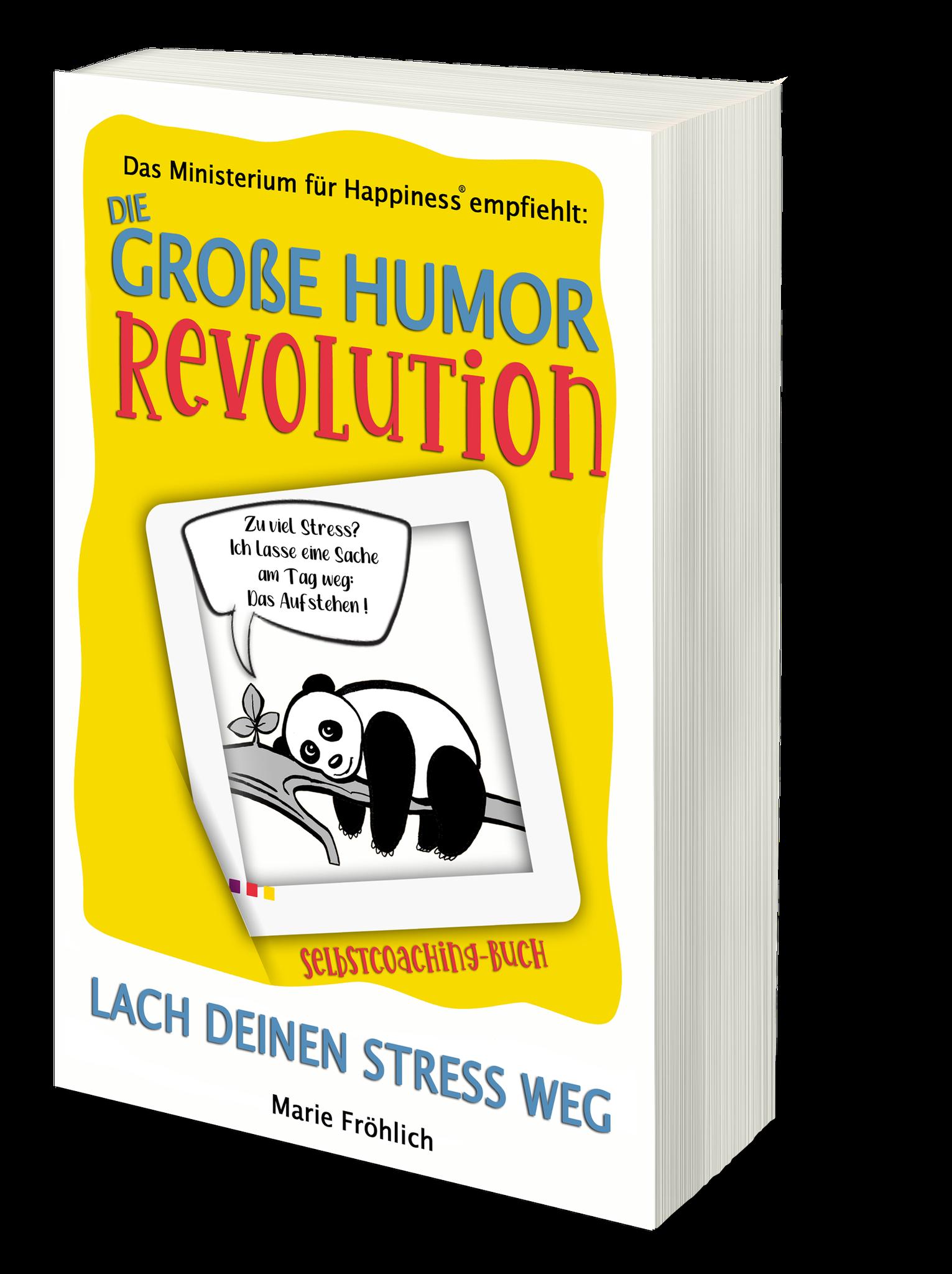 Die große Humor Revolution: Lach deinen Stress weg. Selbstcoaching-Buch