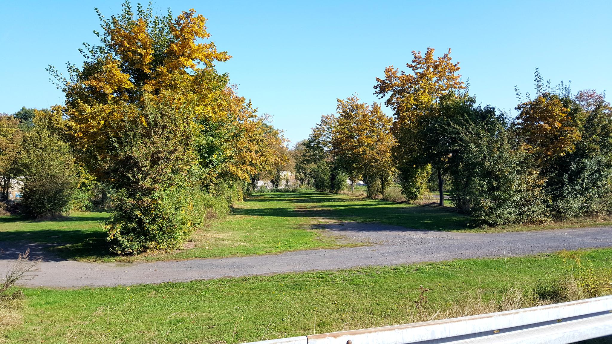Perfekte Parkplatzsituation am Tag des Laufes: Hier nur ein Teil der vorgesehenen Parkfläche