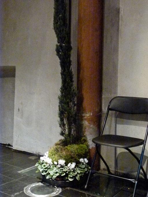 """""""Zeder"""" und Alpenveilchen erinnern an die Wüste, die blühen soll wie der Libanon, im Libanon blühen die Alpenveilchen wie bei uns der Löwenzahn (Milieukrippe Lyskirchen Foto Matthias Schnegg, Gestaltung Benjamin Marx)"""