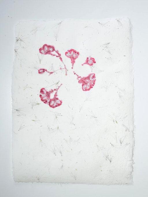 Büttenpapier, doppelt geschöpft, mit Ziergräseren und Blüten einer exotischen Speisepflanze, Michaela Metzler, Österreich