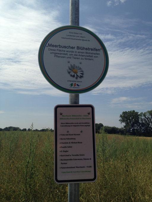 städtisches Hinweisschild zur Information über die Paten des Blühstreifens