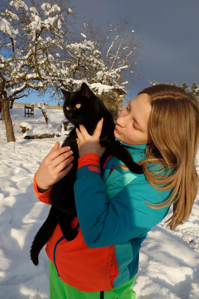 Katze im Winter am Biobauernhof Stadler