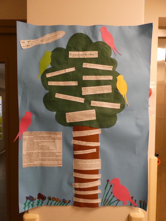 utilité des arbres expliquée aux enfants