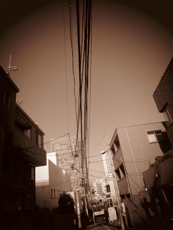 2020.03.01@TOKYO,YOKOHAMA
