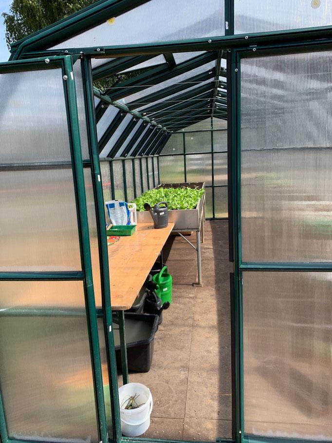 Das Gewächshaus wird über die Restwärme der CO2 neutralen Holzheizung gespeist, sodass das ganze Jahr über Gemüse angebaut werden kann.