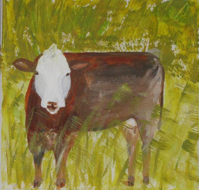 Neugierige braune Kuh, 2019 Acryl auf Leinwand,  70 x 50 cm
