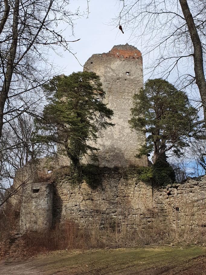"""Die Burgruine von den """"Herren von Bodman"""""""