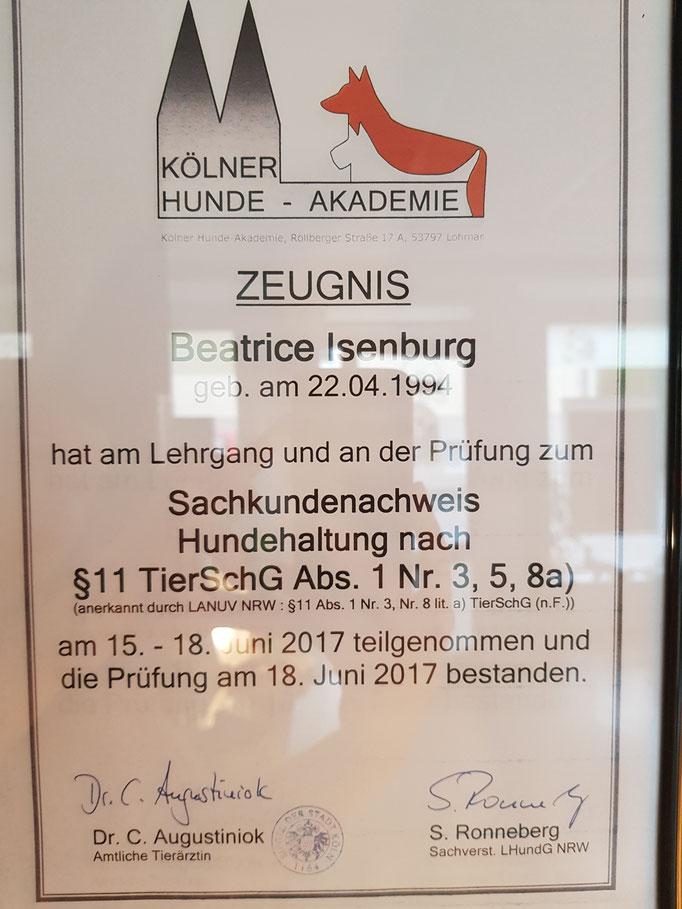 Paragraph 11 Erlaubnis nach §11 Landeshundegesetz NRW