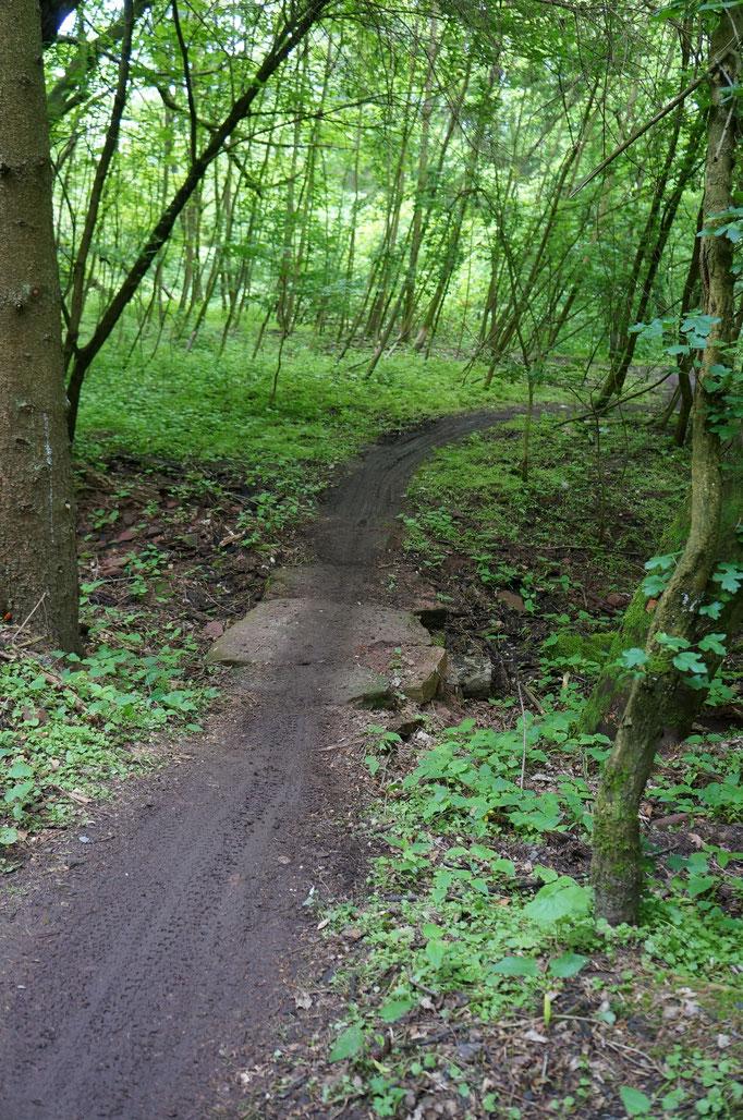 Schönes Geschlängel durchs frische Grün: Der 1,8 km lange Schwimmbad-Trail am Schluss der Strecke machtrichtig Spaß.