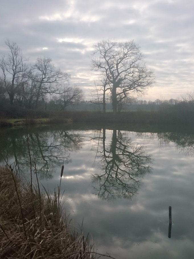 Lake 1 (Jan 2016)