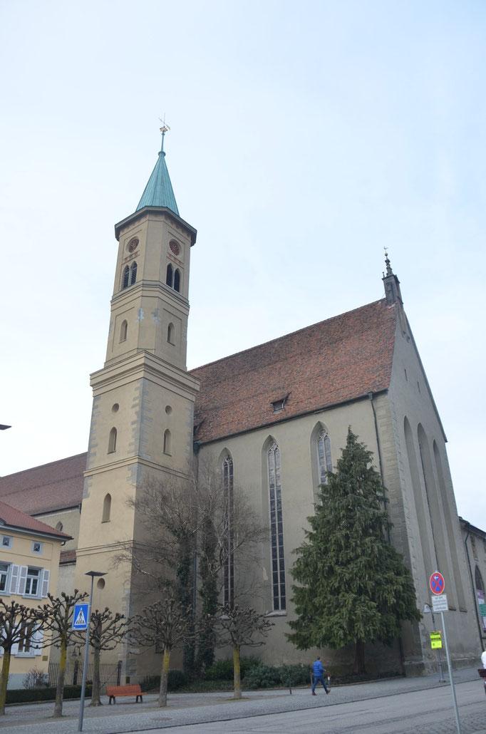 Südseite evangelische Kirche, geplanter Kahlschlag Februar 2016,2 Birken und 1 Thuja ,