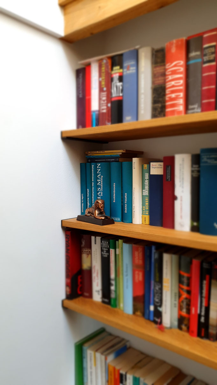 passend zum Deckenbalken integrierte Bücherborde