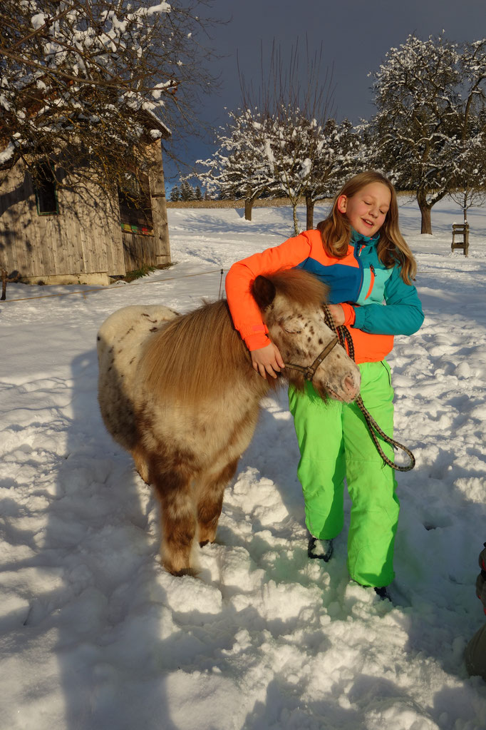 Mädchen mit Pony im Schnee am Biobauernhof Stadler